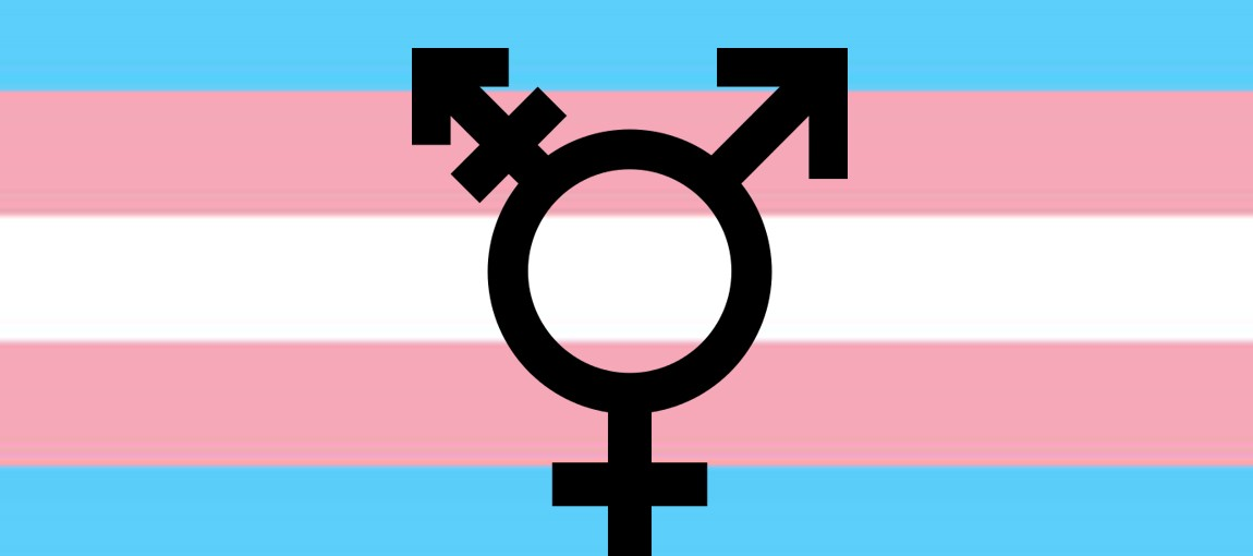 Guest Blog - Trans Visibility in the Trump Era